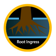 root ingress